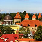 Tallinn, Estonia by Susan Leonard