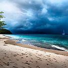 Tropical Storm by geirkristiansen