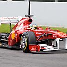 Fernando Alonso 2011 by SHUTTERBLADE
