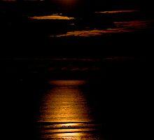 Moon Light by Lynne Morris