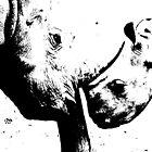 B&W White Rhino by PBreedveld