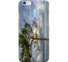 Solitude iPhone Case/Skin