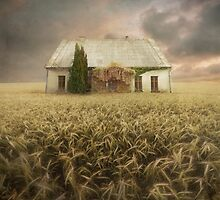 Farmer's House by KLIMAS