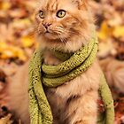 Puddy Cat in a Scarf by Ryan Conners