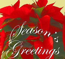 Season's Greetings, Red Poinsettia Christmas Card, ne485c by Tony Weatherman