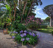 Convent Garden by manateevoyager