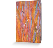 Living colors Greeting Card