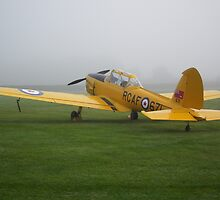 De-Havilland Chipmunk by Andy Jordan