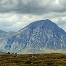 The Great Herdsman Of Etive by VoluntaryRanger