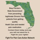 Florida New Laws - Protest Tee by paincare