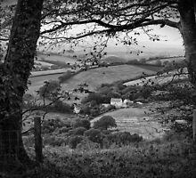 A View From Cadbury Castle by Michael Carter