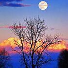 Full Moon Rising by Floyd Hopper