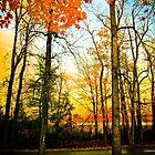 Crimson Skies by SARA0608