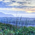 Misty Arakwal Dawn - Byron Bay by Cheryl Styles