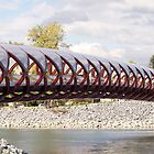 The Peace Bridge by Heather Eeles
