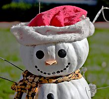 Frosty The Scarecrow by GalleryThree