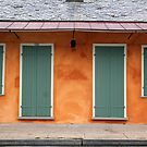 New Orleans Windows and Doors II by Igor Shrayer