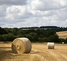 Golden summer harvest by Ian Middleton