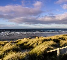 Grassy Sand Dunes at Watery Beach by worldwidewayman
