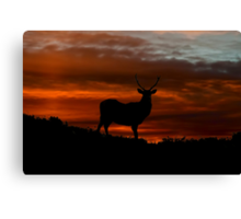 Red Deer Sunset Canvas Print