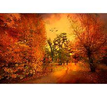 Colours of Atumn Photographic Print