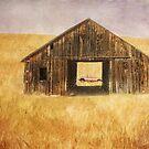 Prairie by KBritt