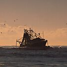 Trawler with birds and dolphins by Odille Esmonde-Morgan