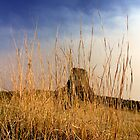 Sunset over Devils Tower .4 by Alex Preiss