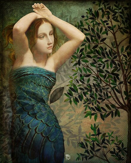 Sonority of the Forest  by ChristianSchloe