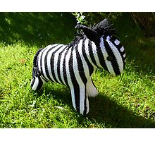 Hand Knitted toy Zebra Photographic Print