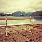 Lake Bled, Slovenia by Ryan Davison Crisp