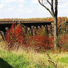 Kinzua Trestle, Pennsylvania by artwhiz47