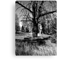 Ghostly Picnic Canvas Print