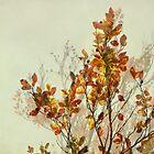 autumn symphonies I by Iris Lehnhardt