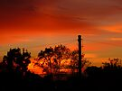 Rich Red Sunset by Vicki Spindler (VHS Photography)