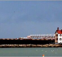Seascapes - Lorain Lighthouse and Lake Freighter by Fojo