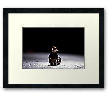 Indiana Alones Framed Print
