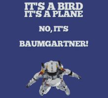 Super Baumgartner! by 91design