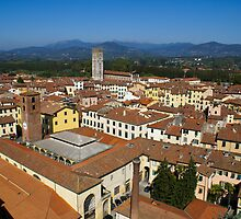 Lucca, Italy by fg-ottico