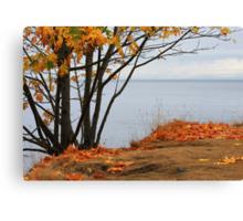 Autumn sliced with a tear Canvas Print