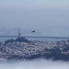 Above the City by the Bay by fototaker
