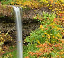 South Falls, Silver Falls State Park by Jim Stiles