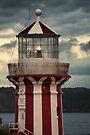 Hornby Lighthouse by yolanda
