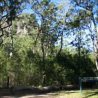 Tibragargan, GlasHouse Mts s e QLD Aust. by MardiGCalero