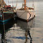 Cornish Oyster Catchers by Johnathan Bellamy