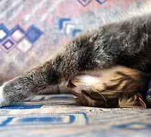 Sleeping Beauty by Maria Dalinger