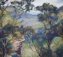 Leura - Prince Henry cliff walk by Terri Maddock