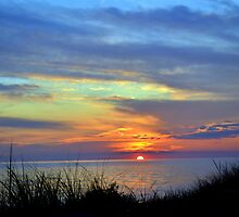 Sunsets 11 by Debbie  Maglothin