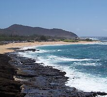 Black Rock Beach, O'ahu, Hawaii by Richard J. Bartlett