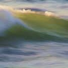 Wave in Abstract by Barbara  Brown